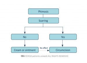 Fig. 1: Decision-making process for treating phimosis.